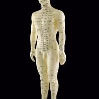 Facebook side, der dokumentere effekten af akupunktur.